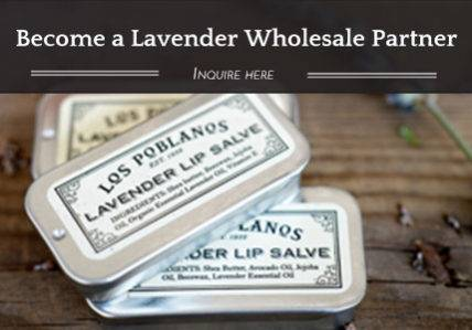 Become a Lavender Wholesale Partner - Inquire Here