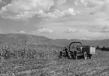 Historic LP Farm Film Screening